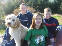 Picture of Lovey, an Australian Labradoodle, with his forever family
